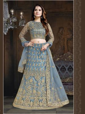 Here Is A Very Designer Lehenga Choli To Add Into Your Wardrobe For The Upcoming Wedding Season In Grey. Its Pretty Blouse And Lehenga Are Fabricated On Net With Satin Inner Paired With Net Fabricated Dupatta. Its Pretty Color And Heavy Embroidery Will Definitely Earn You Lots Of Compliments From Onlookers.
