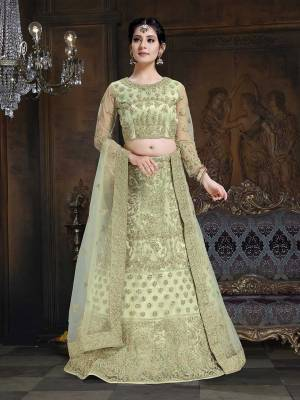 Here Is A Very Designer Lehenga Choli To Add Into Your Wardrobe For The Upcoming Wedding Season In Pastel Green. Its Pretty Blouse And Lehenga Are Fabricated On Net With Satin Inner Paired With Net Fabricated Dupatta. Its Pretty Color And Heavy Embroidery Will Definitely Earn You Lots Of Compliments From Onlookers.