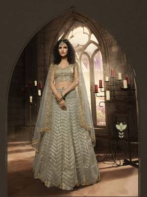 Flaunt Your Rich And Elegant Taste Wearing This Designer Lehenga Choli In Grey Color. This Heavy Embroidered Lehenga Choli Is Fabricated On Net Paired With Net Fabricated Dupatta. It Is Beautified With Heavy Embroidery Over The Blouse, Lehenga And Dupatta. Buy This Pretty Lehenga Choli Now.