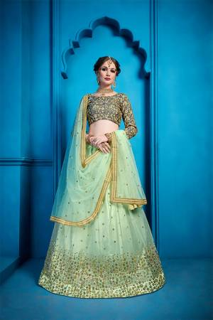 Add This Very Beautiful Designer Lehenga Choli To Your Wardrobe In Dark Grey Colored Blouse Paired With Pastel Green Colored Lehenga And Dupatta. Its Blouse Is Fabricated On Art Silk Paired With Net Fabricated Lehenga And Dupatta. It Has Very Pretty And Attractive Embroidery Which Will Definitely Earn You Lots Of Compliments From Onlookers.