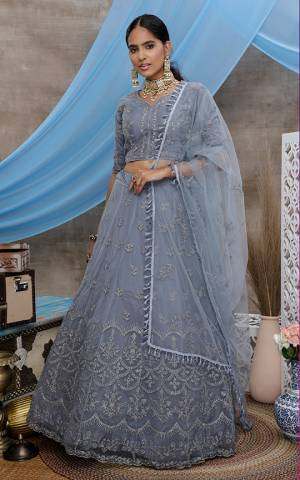 You Will Definitely Earn Lots Of Compliments Wearing This Heavy Designer Lehenga Choli In Grey Color. Its Blouse, Lehenga And Dupatta Are Fabricated On Net Beautified With Attractive Embroidery Work.