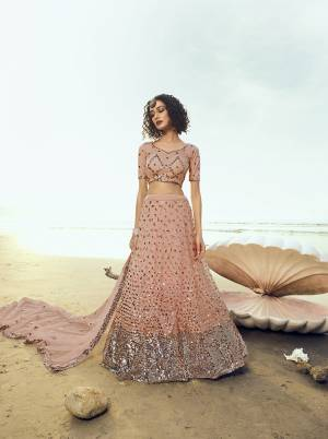 Look Pretty Wearing This Heavy Embroidered Lehenga Choli In Peach Color. This Pretty Lehenga, Choli And Dupatta Are Fabricated On Net Beautified With Heavy Sequence Work. Its Pretty Color And Embroidery Will Earn You Lots Of Compliments From Onlookers.